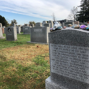 Support the New Camden Cemetery