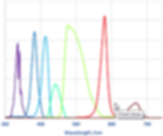 Spectres des LED Niji