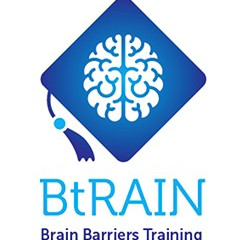 Brain Barriers Training -12 PhD students positions available on brain barrier research