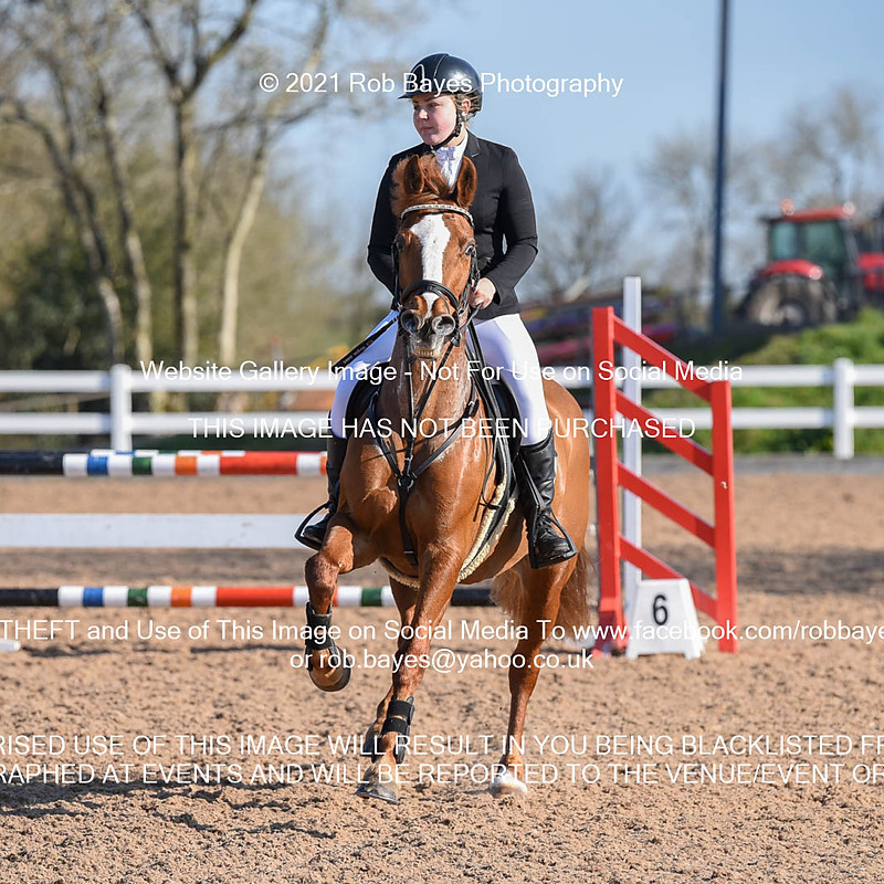Chard Eq, Pony Intro 90cm Open