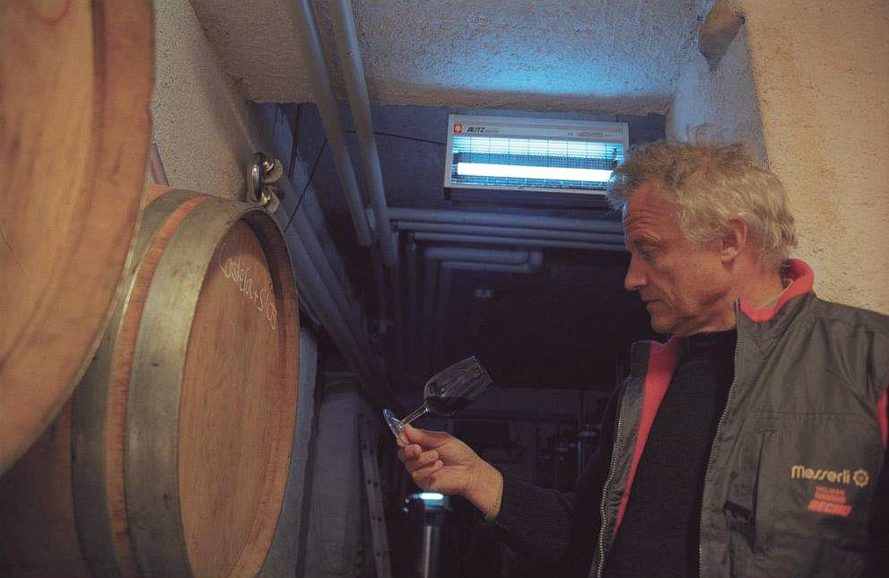 Im Weinkeller, HuberVini