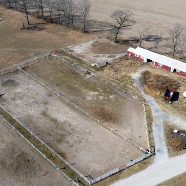 Trot Farm Auction (33).jpg