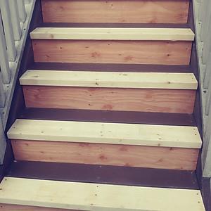 Exterior Stairs Restoration/Build