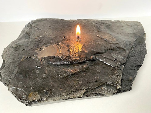 Single Wick with Seashell Fossils Rock Candle -medium