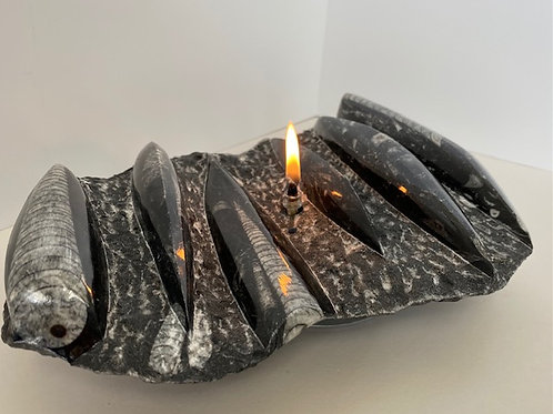 Orthoceras Fossil Candle -medium