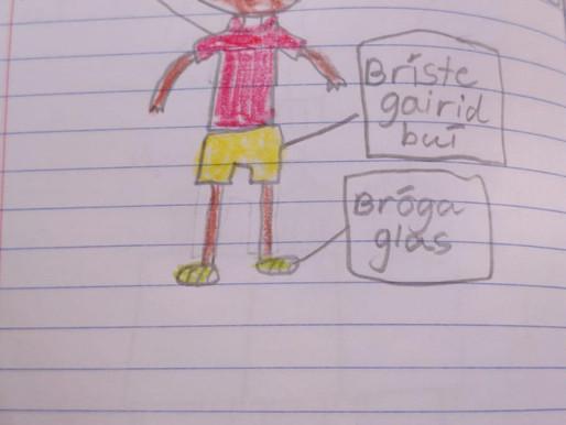 2nd class Gaeilgoirs