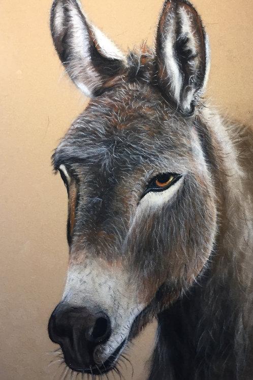 Cleethorpes Donkey