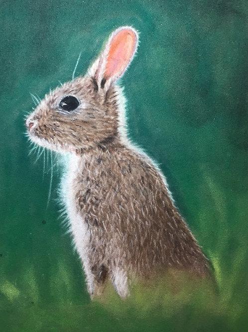 Original Bunny