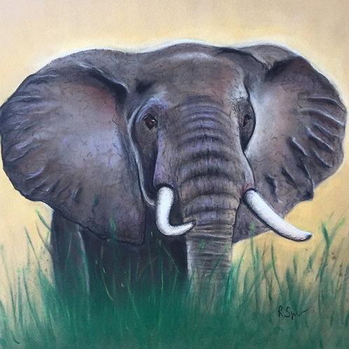 Original Elephant
