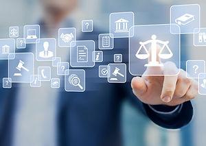 Litigation Consulting