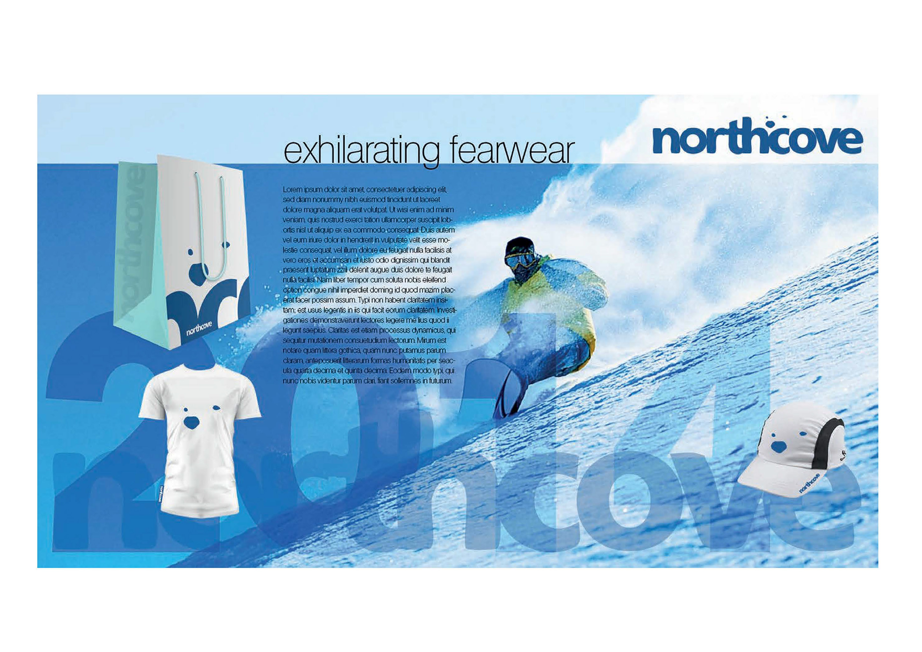 Northcove Website Concept
