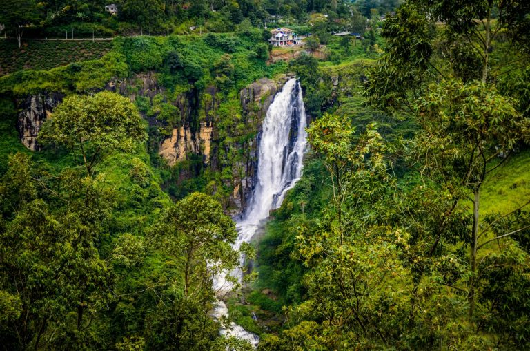 Devon's Waterfalls