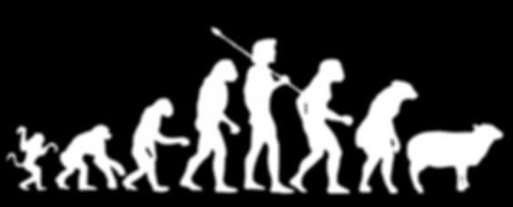 darwin-evolution_edited.jpg