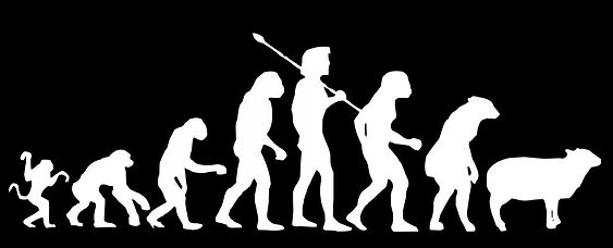darwin-evolution_edited.jpg