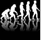 evolution-02.jpg