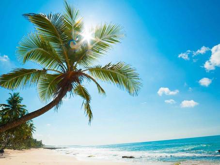 Dalawella Beach: A Social Media Hotspot that Drives Tourism in Sri Lanka