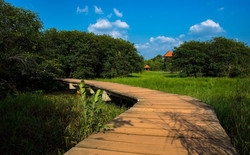 Beddagana Wetland