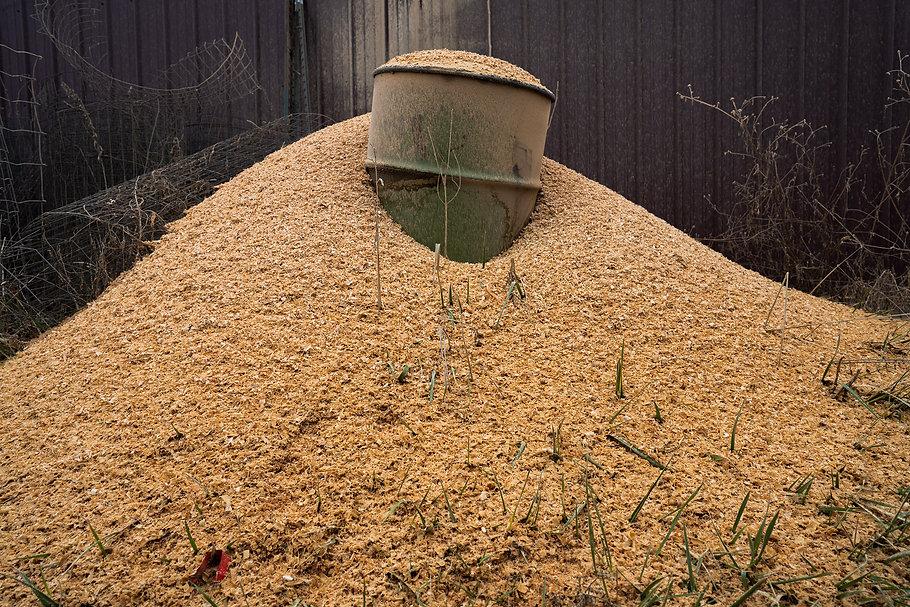 _KOT1153-2020-0207-Web-Sawdust.jpg