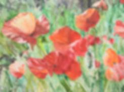 Poppy paintign by Bonnie Merrill