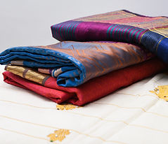 Shutterstock - Wix- saree with golden de