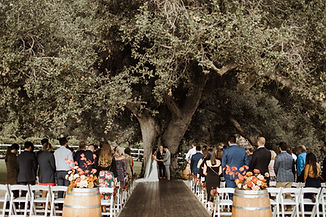 Ceremony Closer Up with Oak Tree and Gue