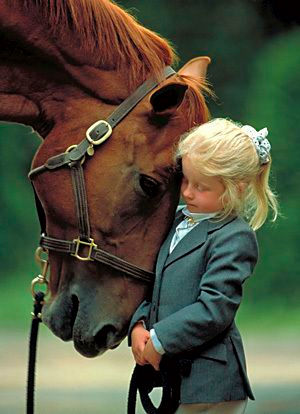 Horse-Assisted Psychotherapy