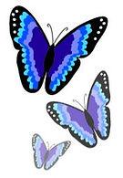 Papillon Logo 3 butterflies_edited.jpg