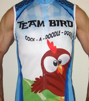 Team In Training custom jerseys | Custom jersey Leukemia & Lymphoma Society - Scenic Shore 150 Bike Tour | American Diabetes Association Tour de Cure |Custom Sleeveless Jerseys
