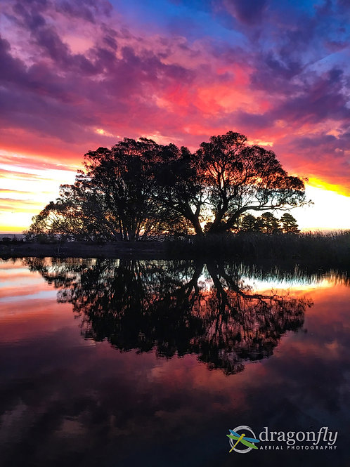 Sunset and Tree reflections