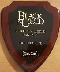 Black & Gold award 2018.jpg
