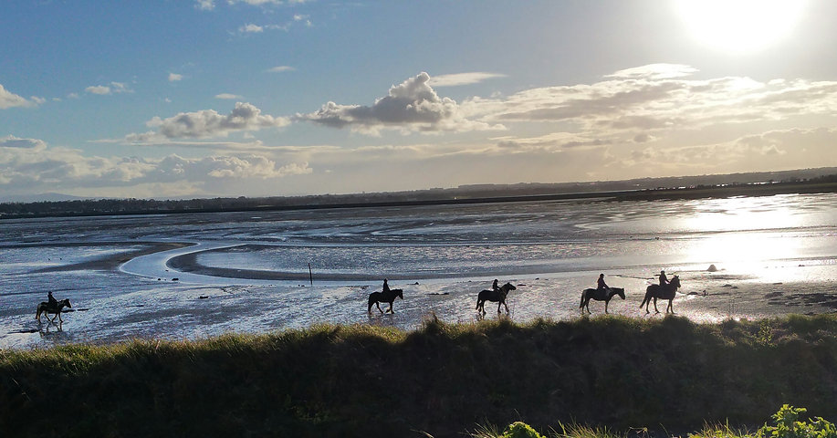 Corballis horse riding dublin group on beach, wonderful horse trekking dublin group