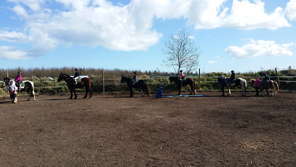 Corballis horse trekking group lesson on beautiful day out in donabate