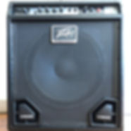 Peavey Max 115 Bass Amp 2010