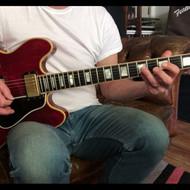 1970 Gibson ES-355 TDSV, Animal Nitrate