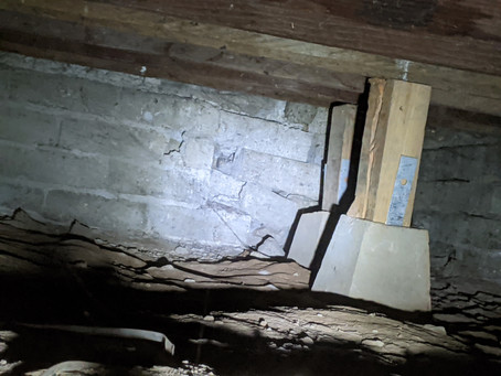 Why Inspect Crawlspaces?