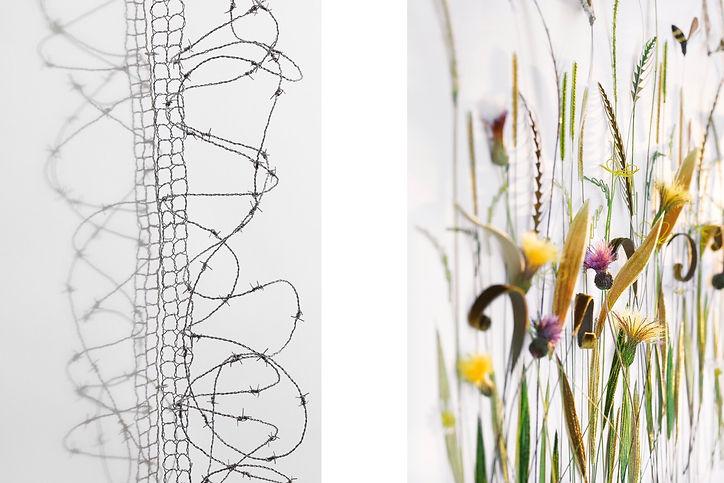 Barbed wire Margaret - Meadow Bridget   (1).jpg