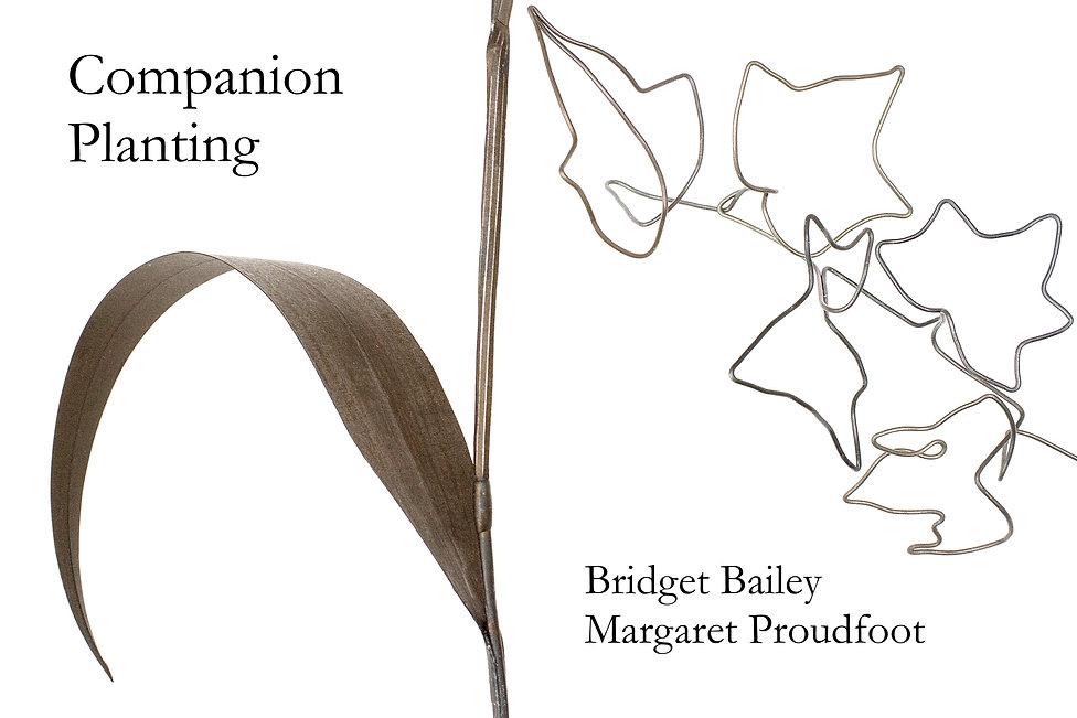 Comppanion Planting joint image .jpg