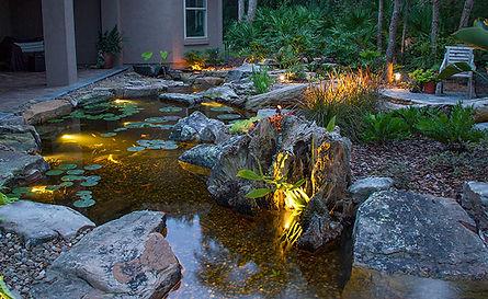 water feature pond ecosystem pond evans