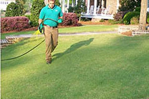 Turf Pride of Augusta is the best weed control company