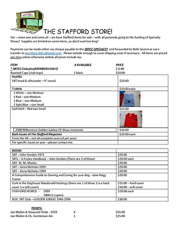 THE STAFFORD STORE.jpg