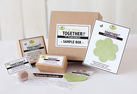 business sample box.jpg