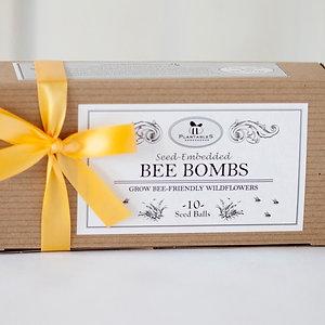 10 Bomb Bee Box