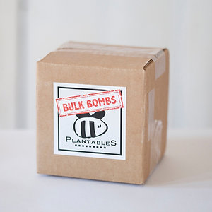 Bulk Bomb Box (50ct)
