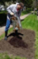 patchy 5 mulch.png
