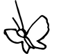 transparent butterfly_edited.png