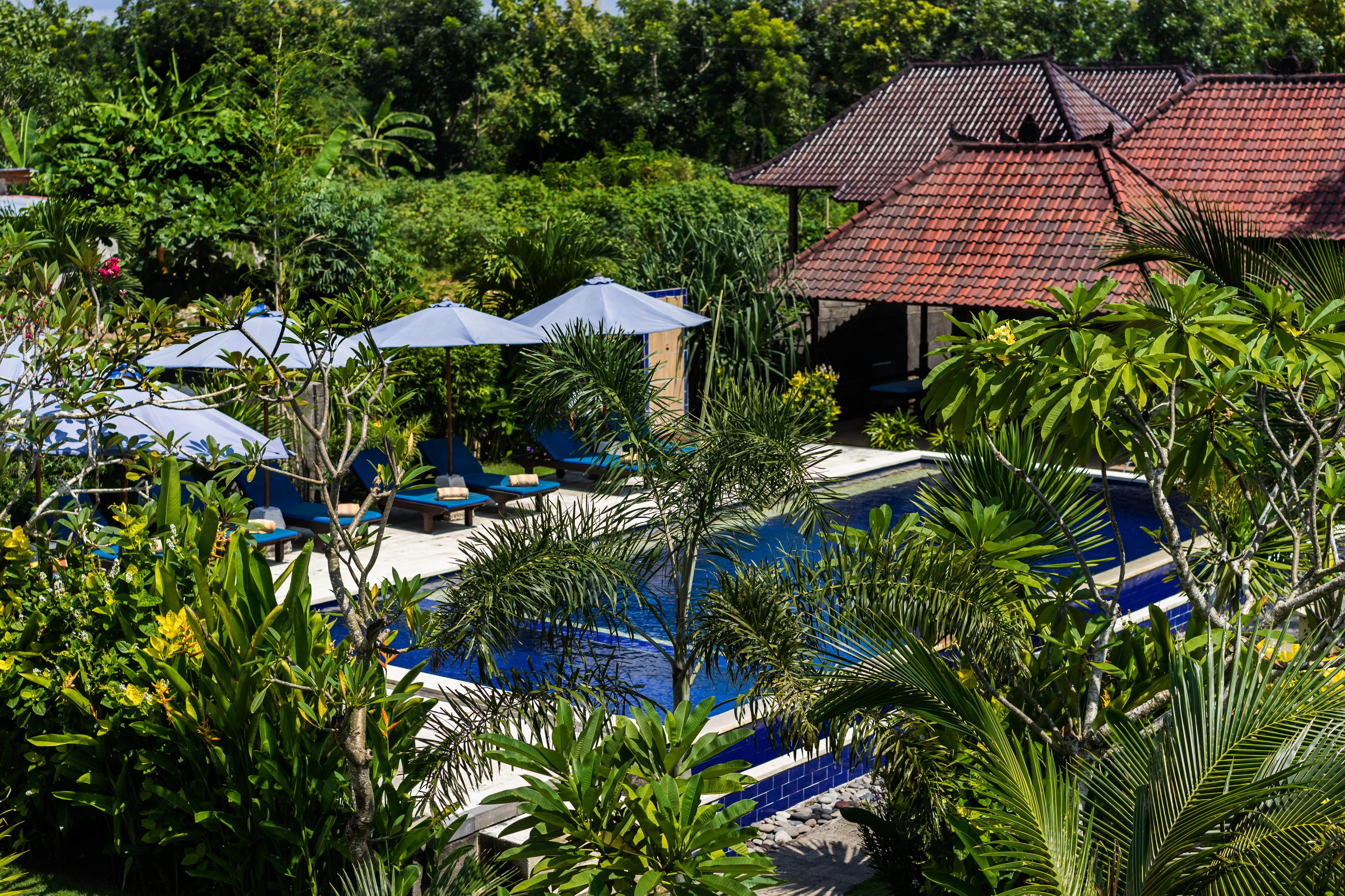 The Cozy Villa Pool View
