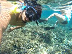 Snorkeling Mangrove