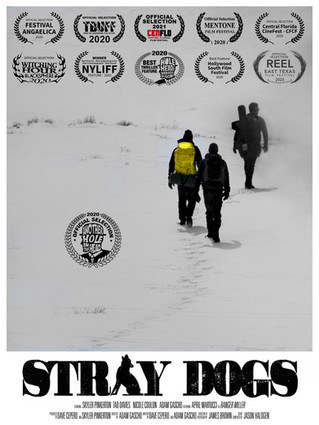 """Stray Dogs"" film and conversation coming to STFF21"