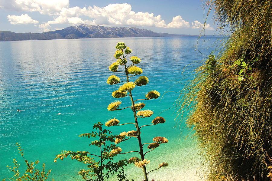 gorgeous-summer-landscape-of-croatia-aga