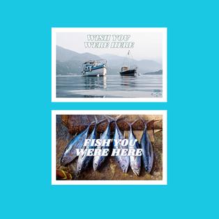 Harry Styles - Postcard, Front Design